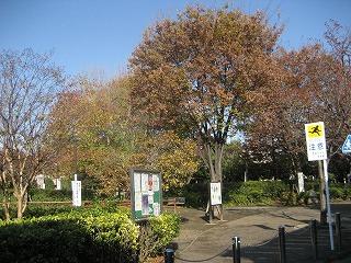 nagasakikouen