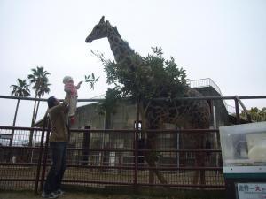 家族二回目の動物園2