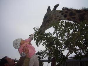 家族二回目の動物園3