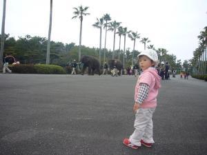 家族二回目の動物園6