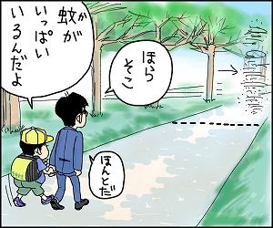 帰り道10