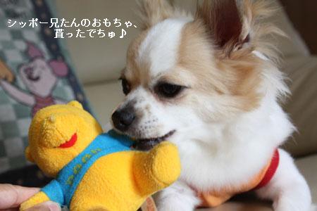 IMG_2309・2 コピー