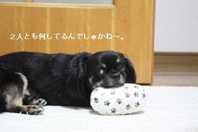 IMG_3132・2 コピー