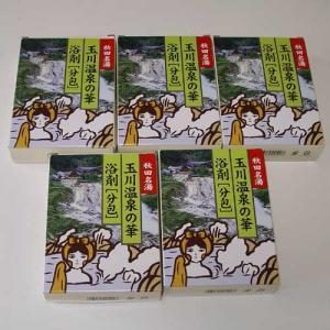 tamagawaonsen.jpg