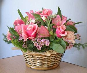 zemidoukiflower.jpg