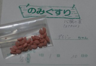 dh-090401.jpg