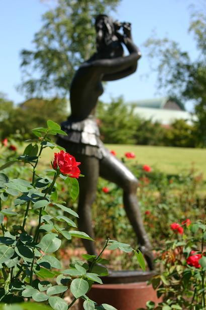 薔薇と踊り子