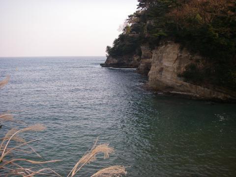 2008.1.8.福島.メバル02