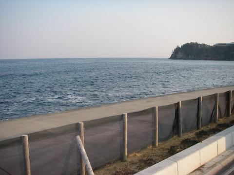 2008.1.8.福島.メバル05
