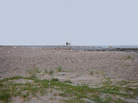 2008.6.18.メバル狙い01