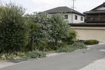 2008-09-14_03.jpg