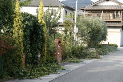 2008-09-14_31.jpg