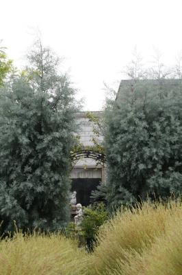 2008-09-23_13.jpg