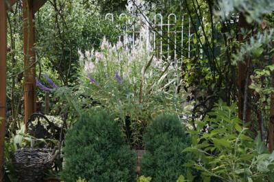 2008-09-23_22.jpg