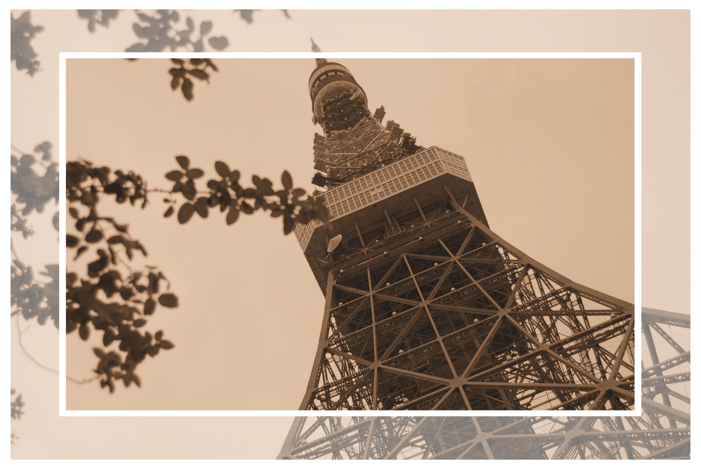 090831東京タワー2
