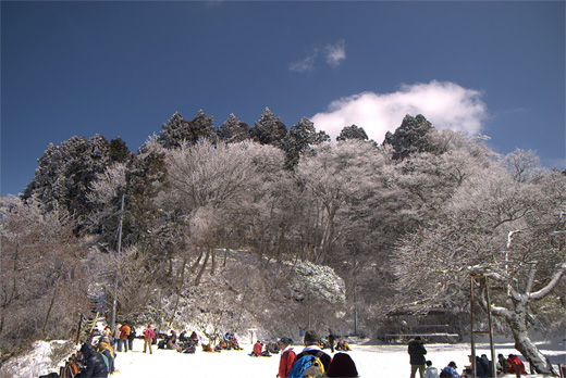 20090315-10.jpg
