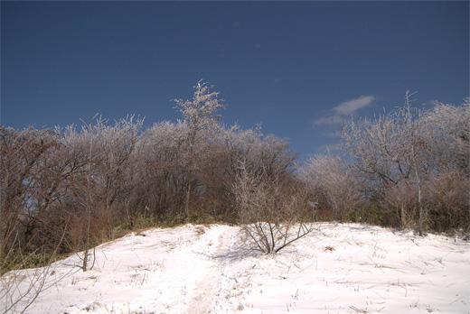 20090315-13.jpg
