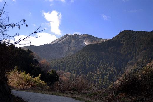 20090315-2.jpg