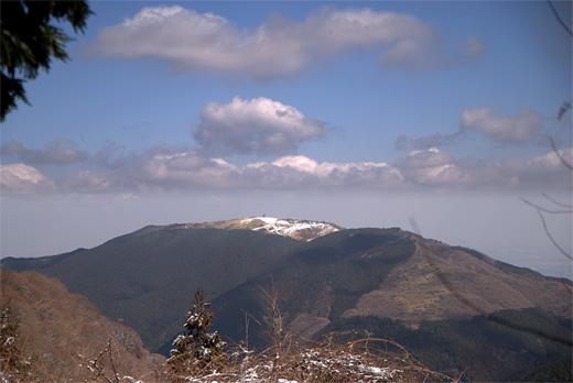 20090315-7.jpg