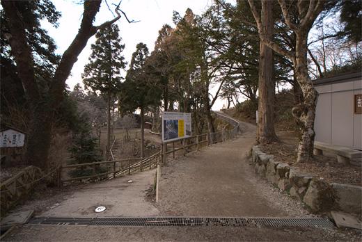 20090321-9.jpg