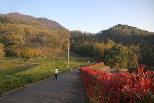 20090415-1.jpg