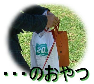 09042806_convert_20090428182833.jpg