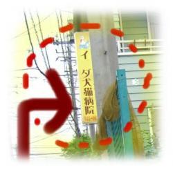 09051305_convert_20090513092714.jpg