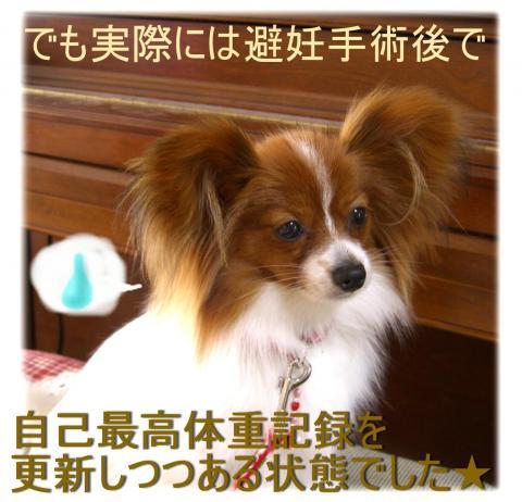 09052012_convert_20090520140514.jpg
