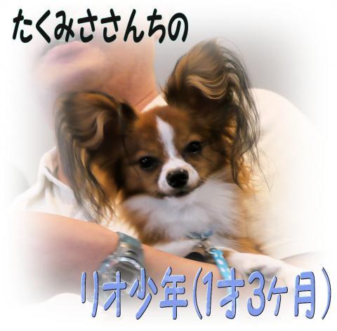 09100110_convert_20090930114706.jpg
