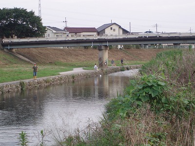 P7120037.jpg