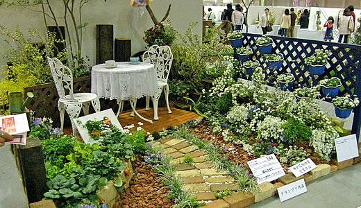 神戸花物語2009-3