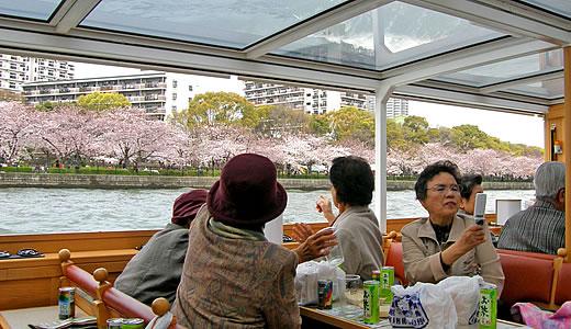 桜スペシャルクルーズ