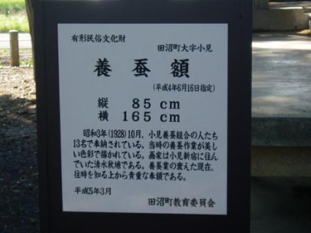 P5070012.jpg