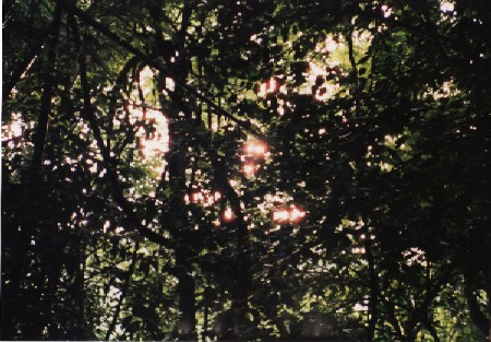a328.jpg