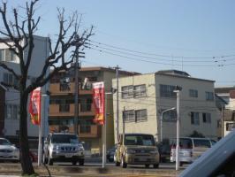 高知の旅 桜 110