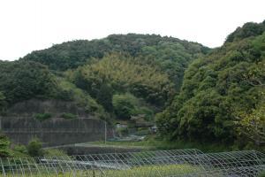 けん、城川町 080