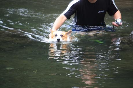 泳ぎの特訓