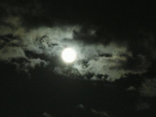 今宵のお月様だよ?ん