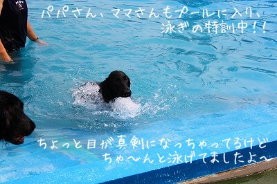 IMG_1307.jpg