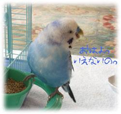 ryo19.jpg