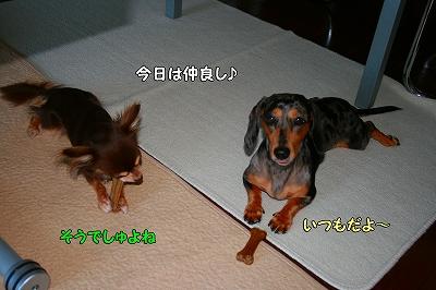 h-IMG_0683.jpg