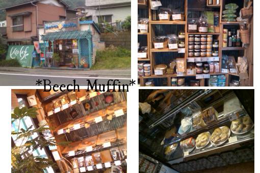 beech muffin