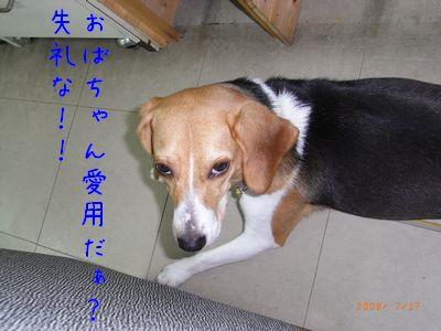 RIMG0034.jpg