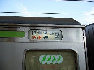 P1150878.jpg
