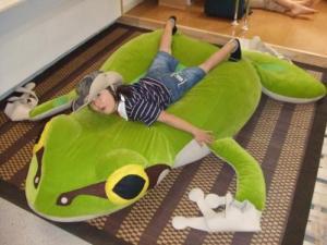 2008年8月13日蛙