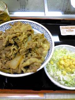 牛丼大盛り+生野菜