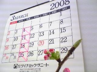 桜、咲くら~♪
