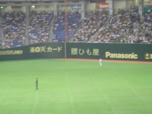 koshihimo80.jpg