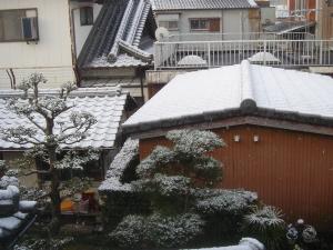 march-snow01.jpg