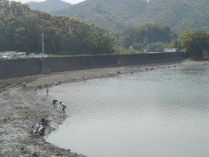 shiohi02.jpg